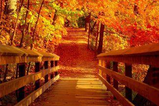 groot-warnsborn-herfst